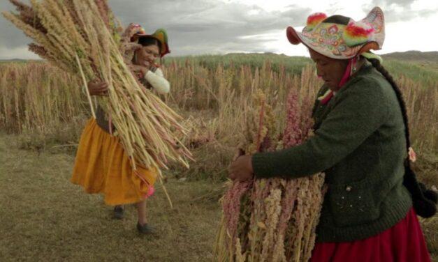 """Comienza el ciclo de documentales andinos """"Alturas Doc"""""""
