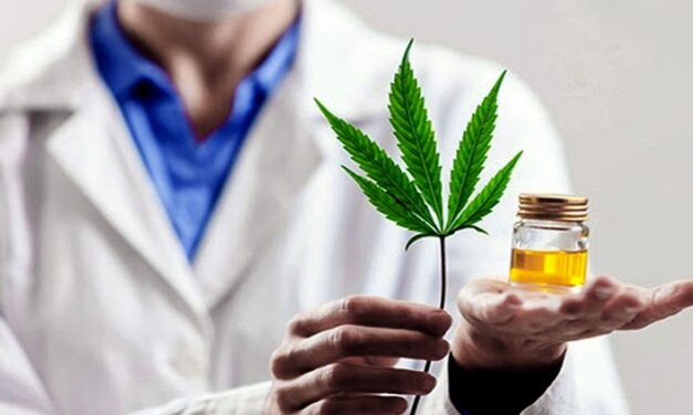 Diputades va por la legalización del cannabis medicinal en provincia de Buenos Aires