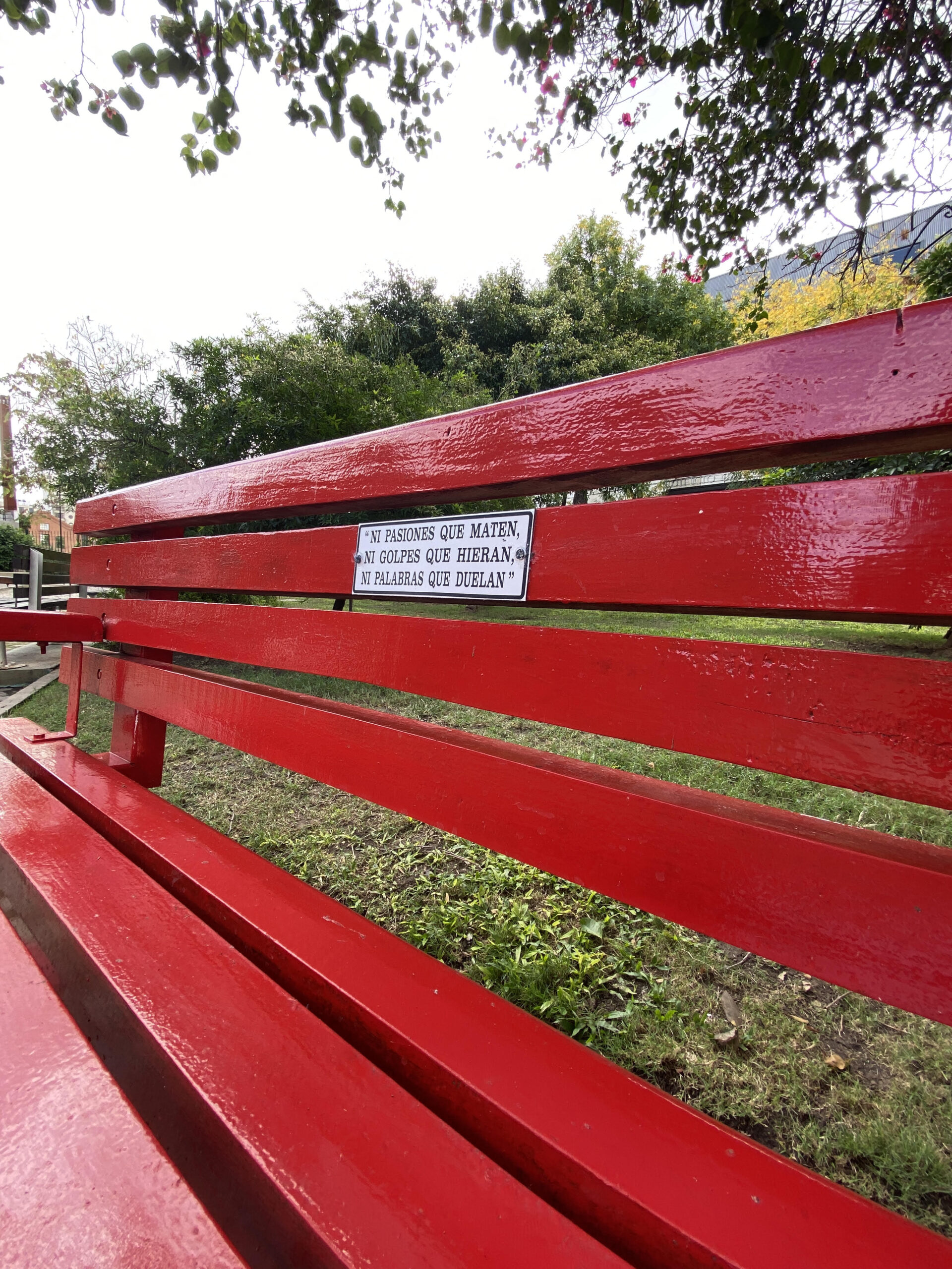 Inauguraron un Banco Rojo en la Plaza Julio Cesar Fumarola