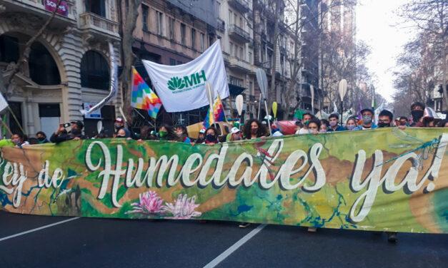 Movilización en reclamo por una Ley de Humedales