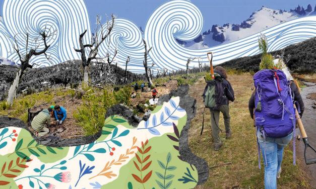Bariloche: Educación ambiental para todo público