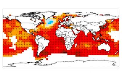 Cambio climático ¿un proceso natural?