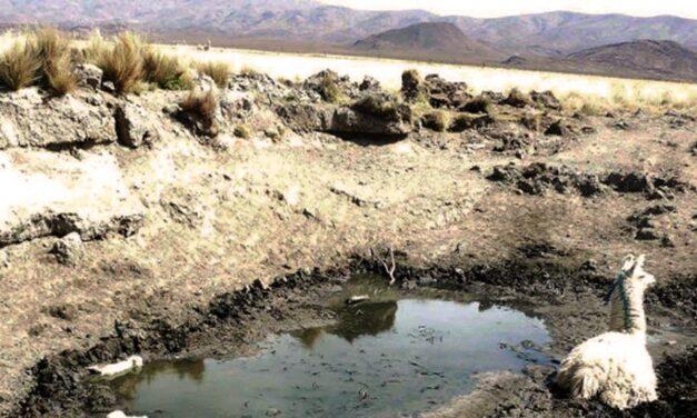 Jujuy: Comunidades indígenas sufren escasez de agua por las sequías
