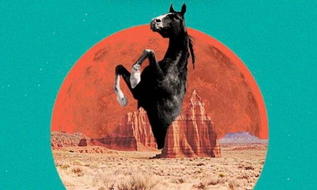 Se viene la 5ta edición del Festival de Cine Luz del Desierto
